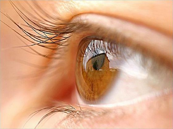 Народные средства для лечения меланоза глаз. Все новости — все ...