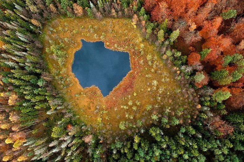 Красочные фотографии о том, насколько волшебна осень в Польше