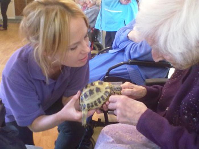 Животные в доме престарелых