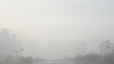 В Москве повысился уровень загрязнения воздуха диоксидом азота