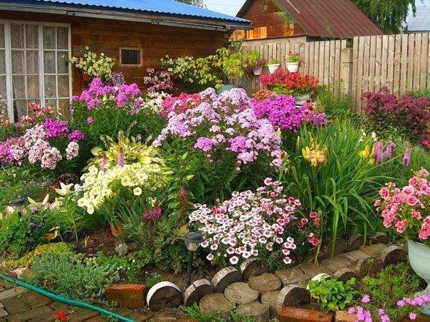 Идеальные условия: природа в помощь садоводу