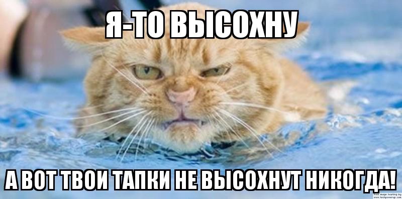 """""""Думаю, что после праздников они уже гулять не будут"""", - Луценко о Лозовом и Дейдее - Цензор.НЕТ 3107"""