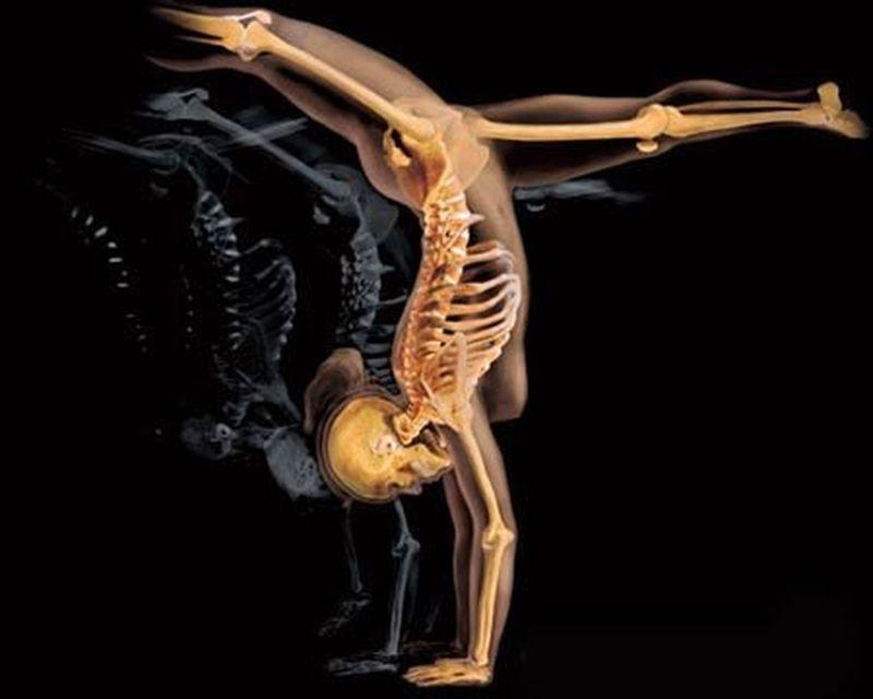 Уникальный фотопроект о том, что скрыто от наших глаз тело, фотопроект