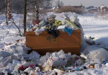 Обязательное страхование могут ввести для операторов мусорных полигонов