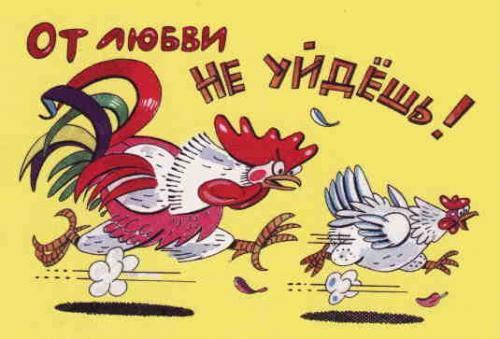 О ЛЮБВИ С ЮМОРОМ :)
