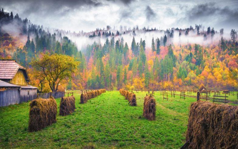 Вся красота осени в великолепных снимках