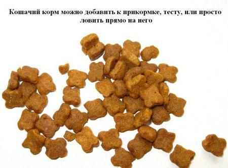 Необычная самодельная прикормка для рыбы из корма для кошек