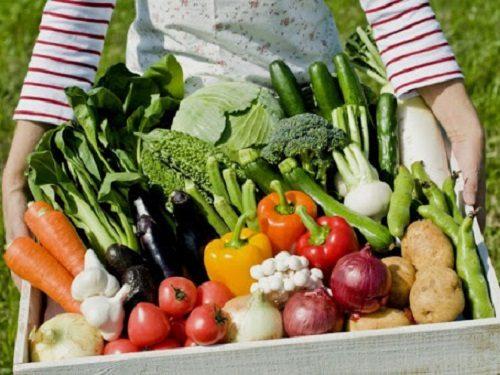Народные заговоры на удачный посев и богатый урожай…