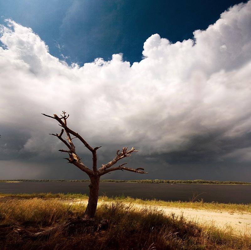 Донецкие пейзажи донецк, пейзаж, факты, фото