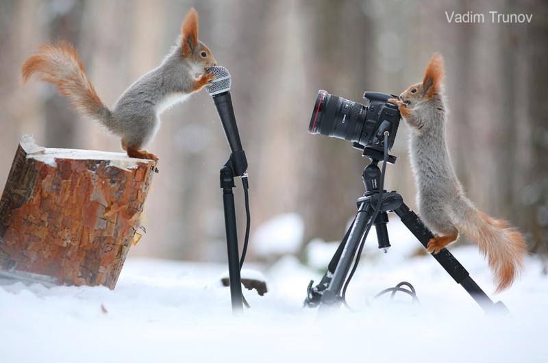 Ближе, смотрим прямо в камеру!