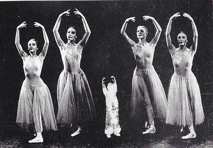 "Кошка Джорджа Баланчина Мурка вместе с танцовщицами участвует в репетиции балета ""Серенада"", 1970-e история, картинки, фото"