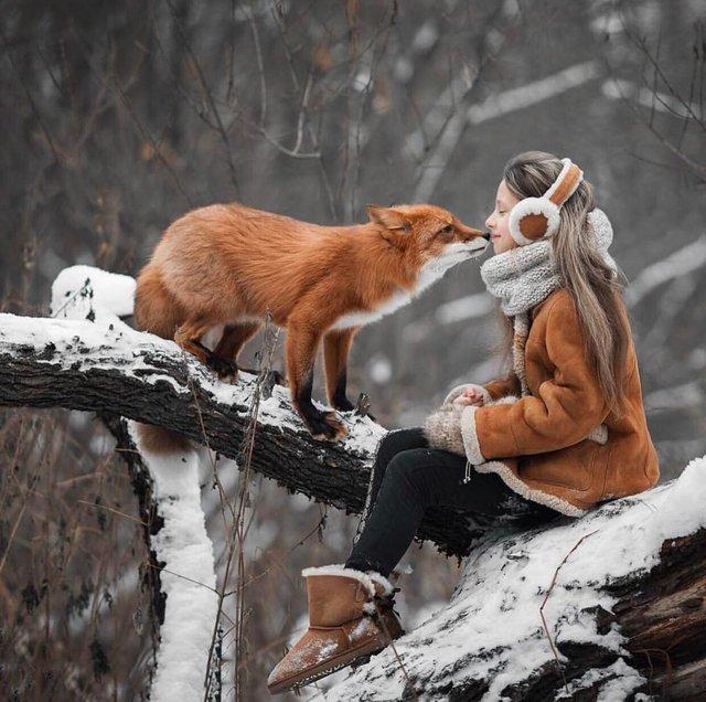 пушистые лапусики, Животные милашки