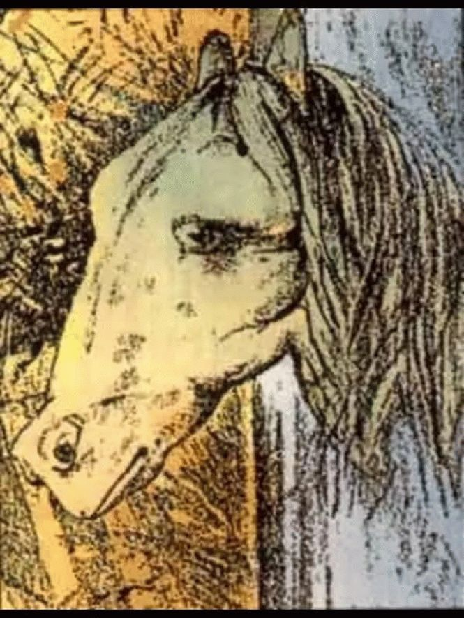 иллюзия картинка коней вам хочется как-то