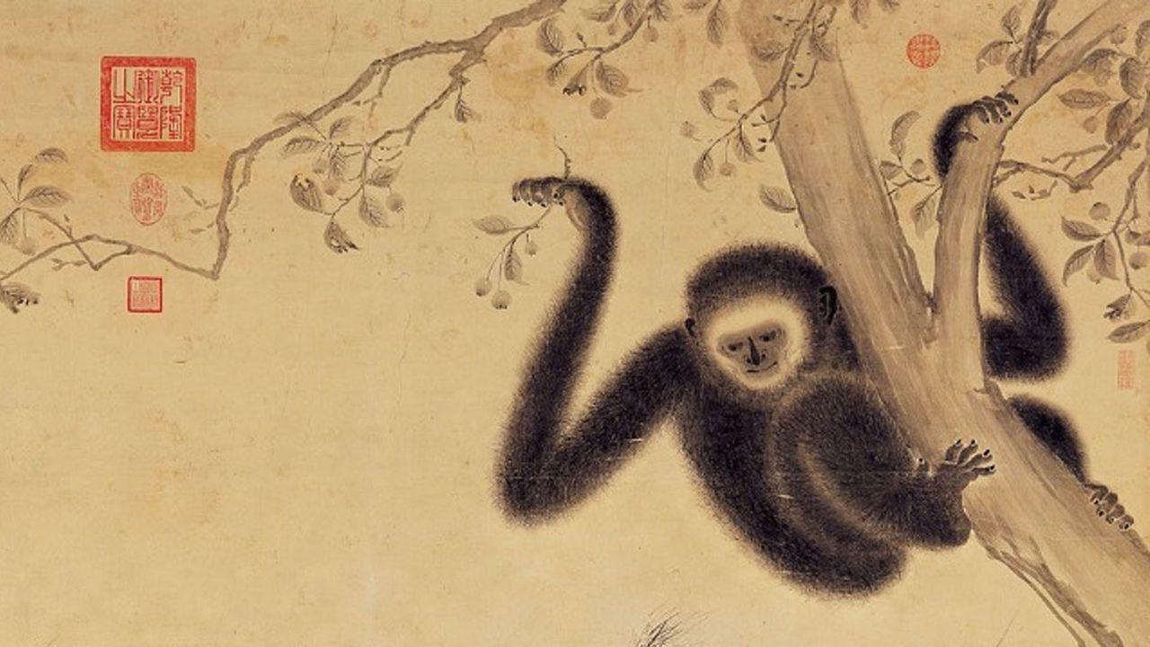 В древней императорской гробнице нашли останки неизвестной обезьяны