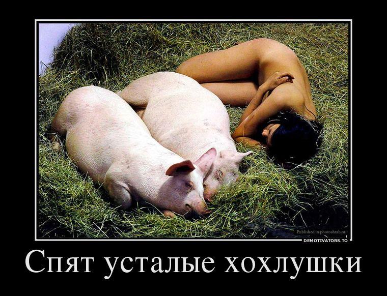 мясо проститутки