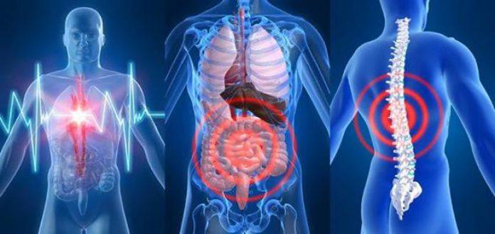 Научитесь распознавать сигналы своего организма, и Вы всегда будете здоровы