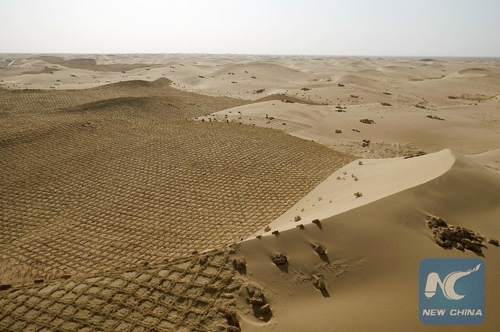 Борьба с пустыней в Китае Китай,природа,пустыня