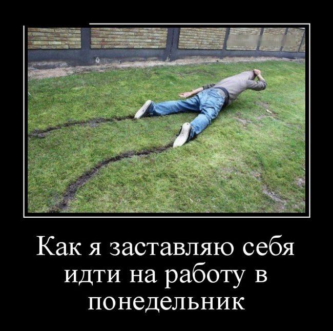 Жизнь удалась!