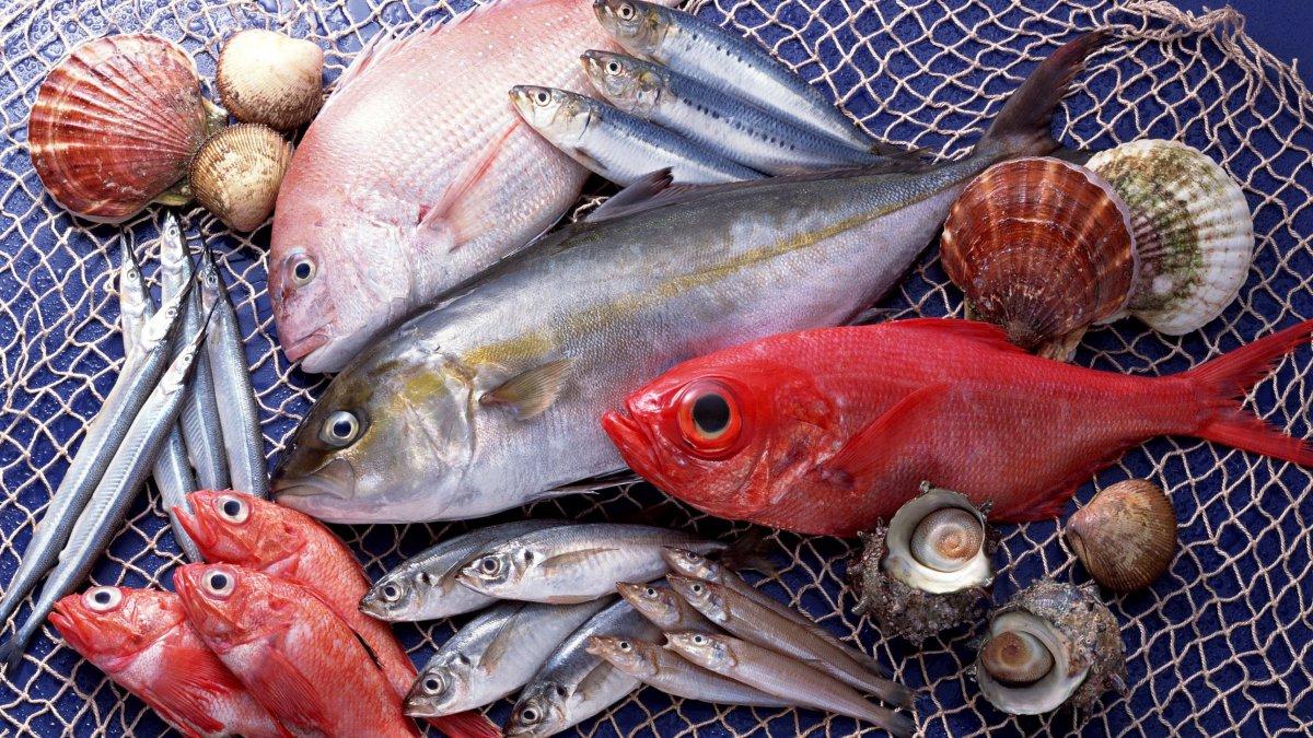7 мест, где от рыбы осталось только название