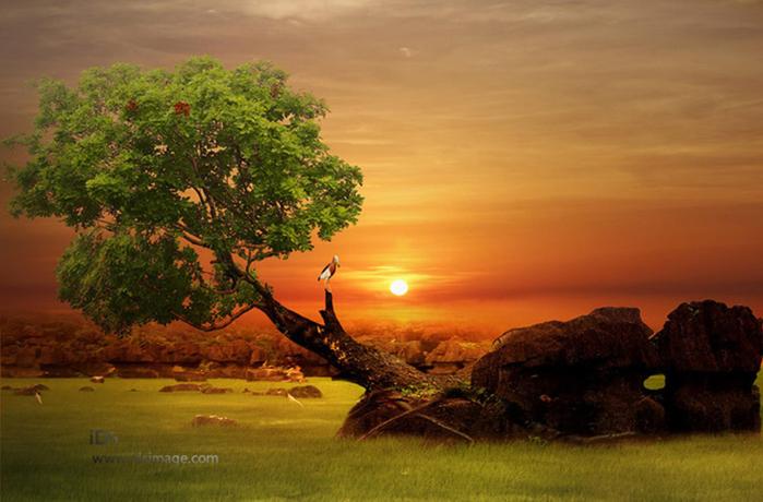 Удивительно красивая природа Индонезии на фотографиях Idrus Arsyad
