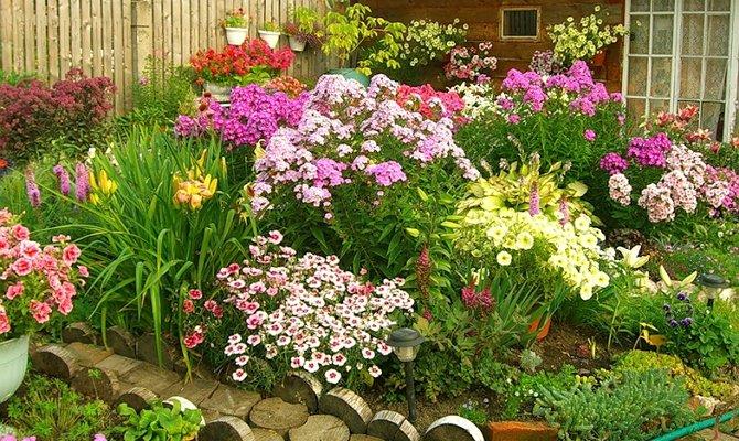 Как оформить клумбу перед домом – фото и инструкции к лучшим цветникам + Видео