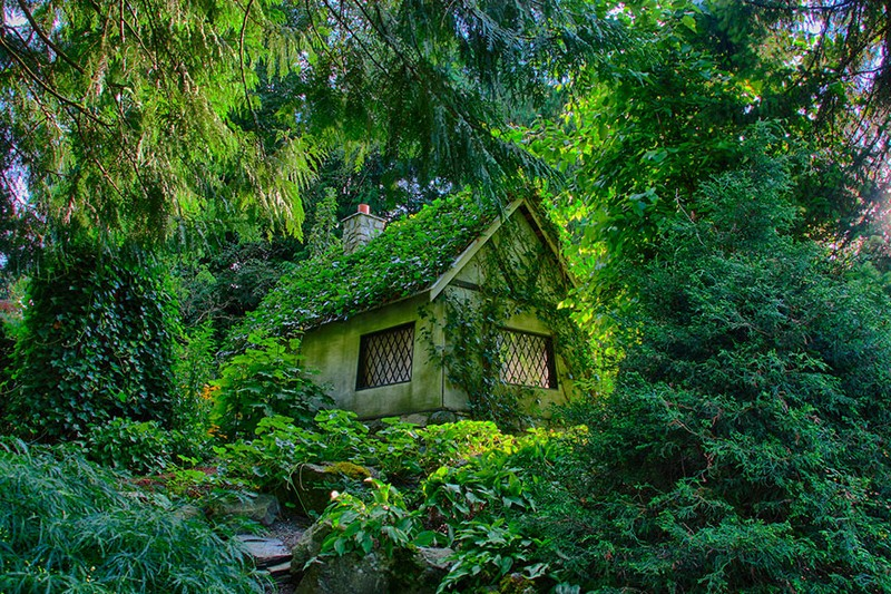 7. Укрытый лесом.