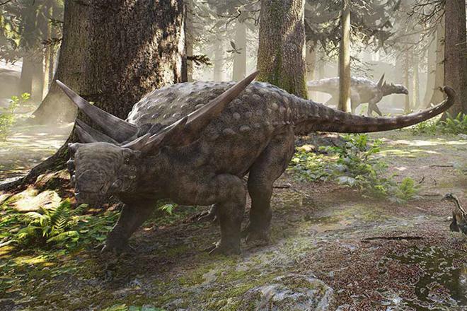 Шахтеры нашли в глубинах рудника древнее окаменевшее существо динозавр,Канада,находка,нечто,Пространство,шахтеры