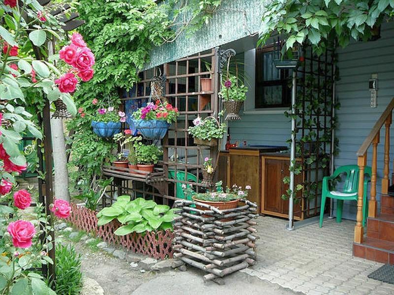 представлены изюминки нашего сада для дачи фото любителей большей