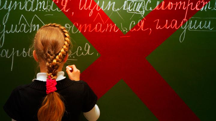 Власти Татарстана душат русский язык и «ставят родителей на колени»