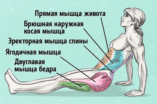 Упражнение, чтобы сжечь жир и исправить осанку