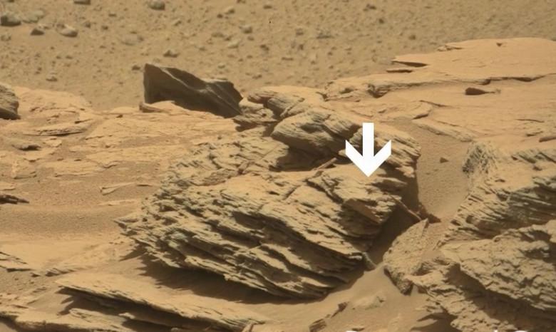 На марсианском фото от NASA высмотрели нечто, очень похожее на паука