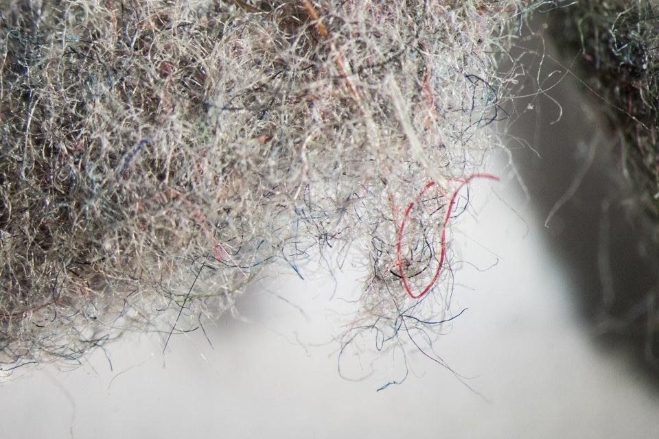картинки пыли под микроскопом вот кто заинтересуется