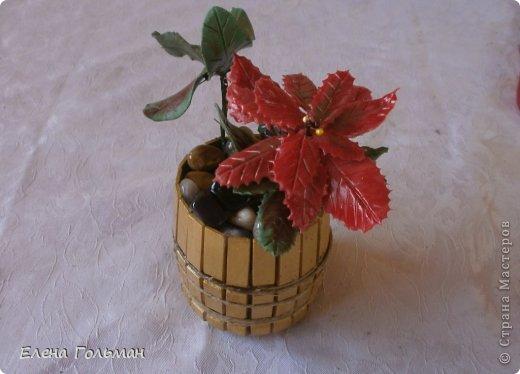 Мастерим декоративный горшочек для цветка из прищепок