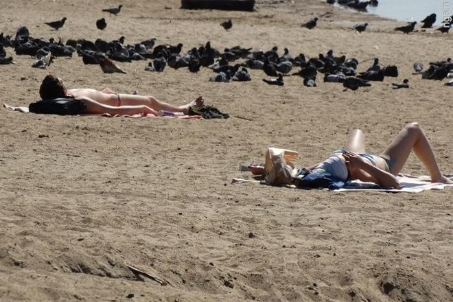 Опасные российские пляжи