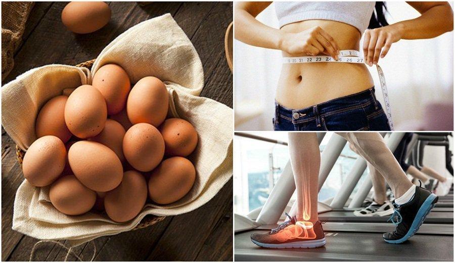 7 причин добавить куриные яй…