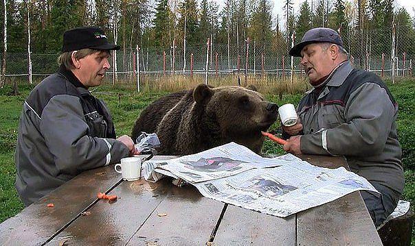 Где-то в России! Покажите эт…