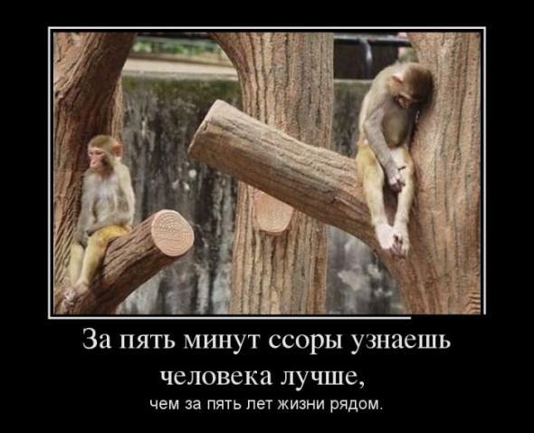 russkie-zvezdi-kartinki-prikoli-s-devushkami-dengi-seks-super