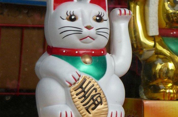 Талисман на удачу: манящий кот.