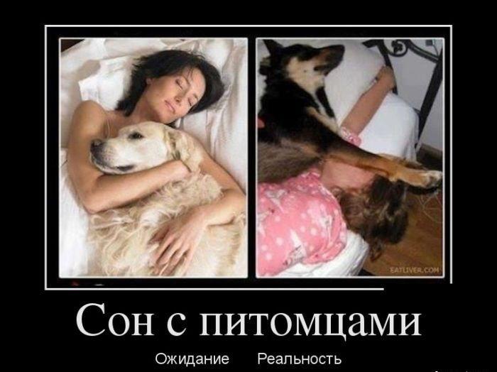 https://mtdata.ru/u24/photo94F0/20878738067-0/original.jpg