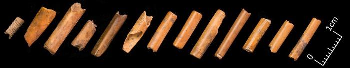 Бусы, сделанные из костей мелких животных. /els-cdn.com