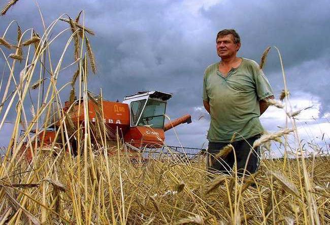 Цена сельского успеха РФ – страшное обнищание сельских тружеников