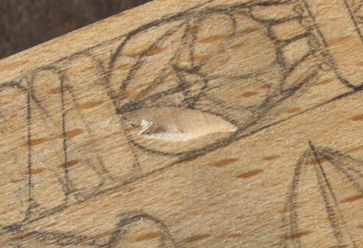 Резьба по дереву для начинающих дерево,резьба,советы