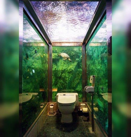 Туалеты с самым необычным дизайном