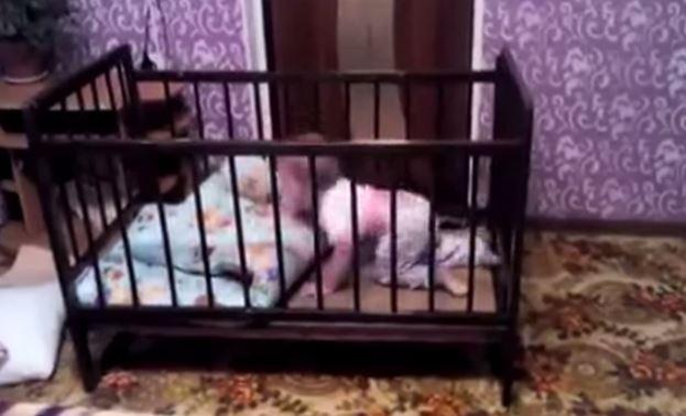 позитивное видео: побег ребёнка из кроватки ))