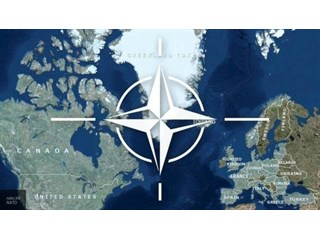 Метастазы «мёртвого мозга НАТО» геополитика