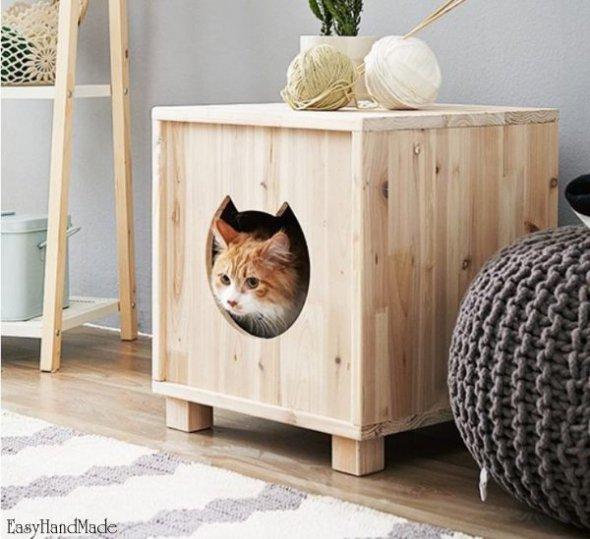 Чем вывести запах от котов или собак из дома домашние животные,полезные советы