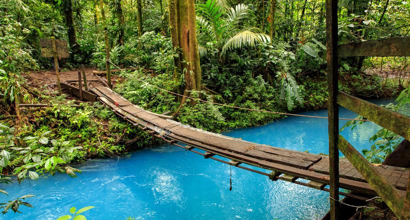 Бирюзовая река Рио Селесте: лишь недавно ученые смогли раскрыть тайну ее цвета