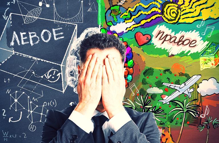 Правда ли, что за логику и творчество отвечают разные полушария мозга