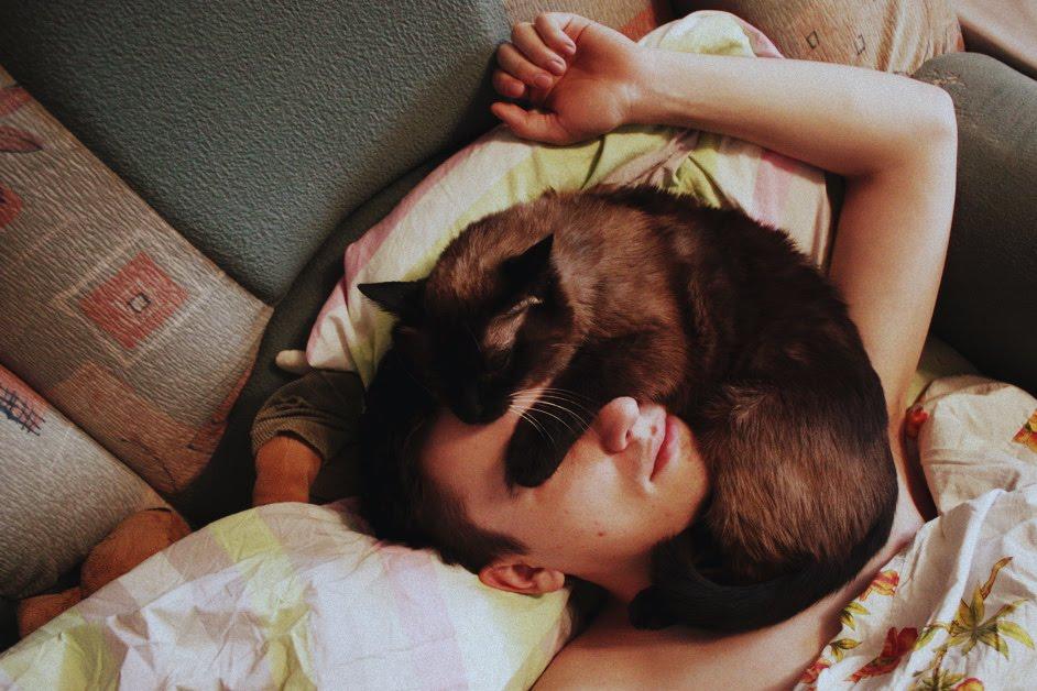 Вот почему коты так любят спать на хозяевах!