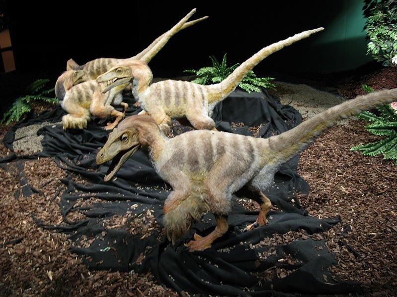 Если бы динозавры не вымерли вымерли, динозавр, природа